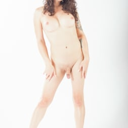 Riley Quinn in 'Transsensual' TS Beauties (Thumbnail 135)